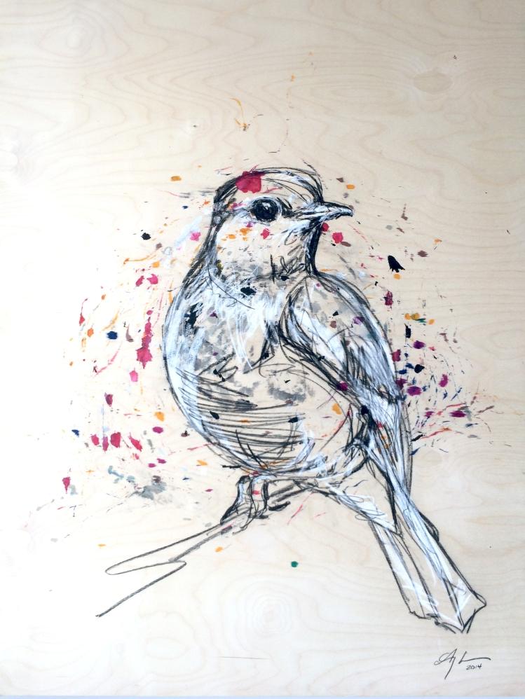 Bird - Colours - Mixed Media on Panel